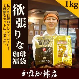 [1kg]欲張りな珈琲福袋[G500・しゃち]/グルメコーヒー豆専門加藤珈琲店/珈琲豆