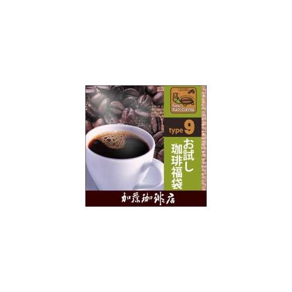 (200gVer)タイプ9(R)スペシャルティ珈琲お試し福袋(Qメキ・白鯱・Hコロ/各200g)/珈琲豆01