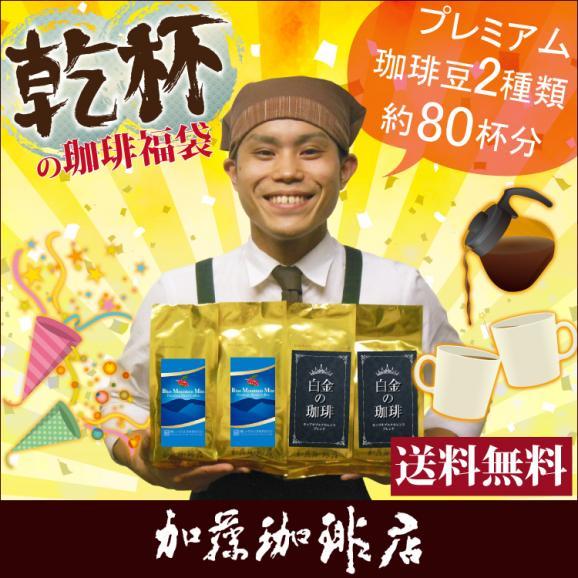 乾杯の珈琲福袋(ミスト200×2・白金200×2)/珈琲豆01