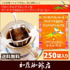 グァテマラ珈琲100%ドリップバッグコーヒー250袋入りセット【全国一律送料無料】/ドリップコーヒー