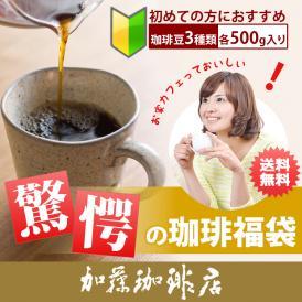 驚愕の珈琲福袋(秋・Qコロ・ラデュ)【送料無料】/珈琲豆