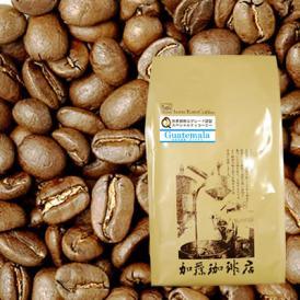 グァテマラ世界規格Qグレード珈琲豆(500g)/グルメコーヒー豆専門加藤珈琲店(ガテマラSHB)
