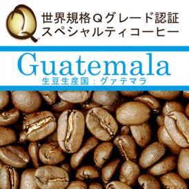 グァテマラ世界規格Qグレード珈琲豆(300g)/グルメコーヒー豆専門加藤珈琲店(ガテマラSHB)