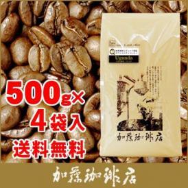 【業務用卸メガ盛り2kg】世界規格Qグレード珈琲豆(Qウガ×4)/グルメコーヒー豆専門加藤珈琲店/珈琲豆