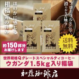 世界規格Qグレード珈琲ウガンダ1.5kg入り福袋(Qウガ×3)/珈琲豆