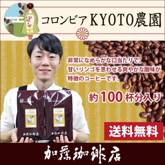 [1kg]コロンビアKYOTO農園(KYOTO×2袋)/珈琲豆01