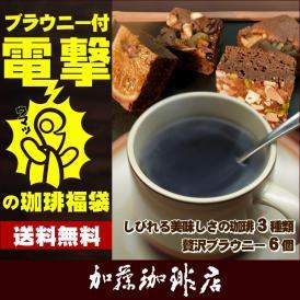 * (ホシフルーツ) ブラウニー* 電撃の珈琲福袋[Qコロ・Qエチオピア・ラス]/珈琲豆