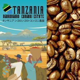 タンザニア・ンゴロンゴロ(200g)/珈琲豆