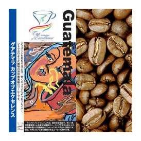 グァテマラカップオブエクセレンス(100g)/グルメコーヒー豆専門加藤珈琲店
