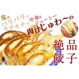 一来一来特製餃子 30ヶ入り【送料込み】