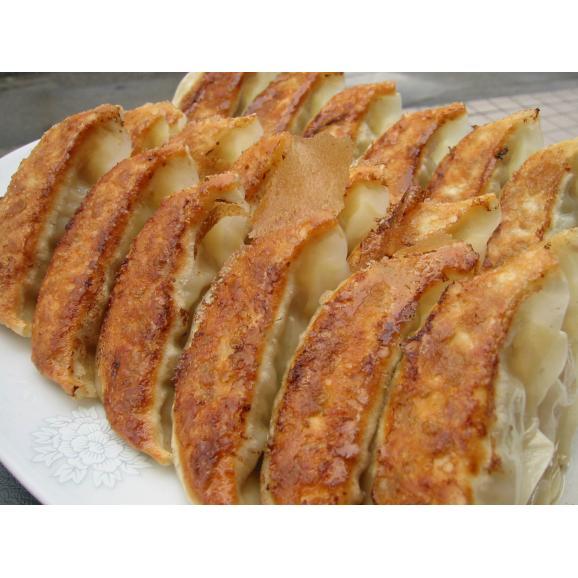 カレー餃子48個入り03