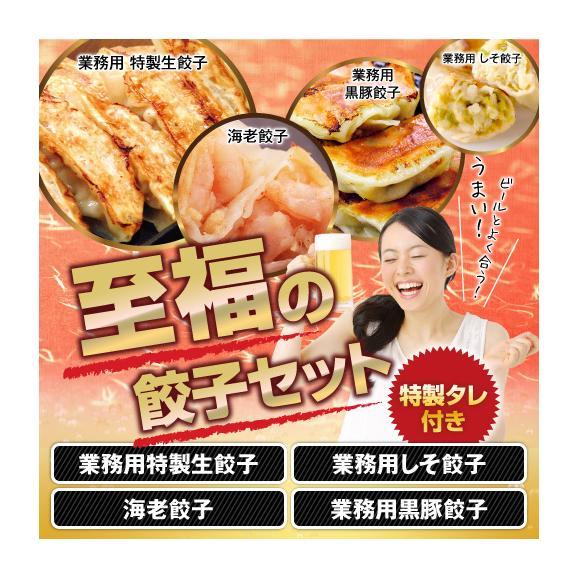 大人気!4種の餃子をセットにしました!【送料無料】至福のひと時餃子セット01