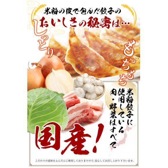 【送料・税込】米粉の皮で包んだ餃子セットB(野菜餃子3袋×肉餃子3袋×タレ10個)02