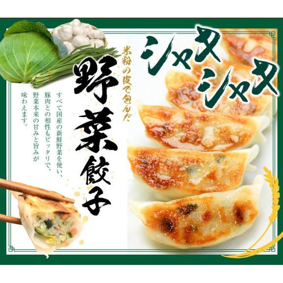 【送料・税込】米粉の皮で包んだ餃子セットB(野菜餃子3袋×肉餃子3袋×タレ10個)04