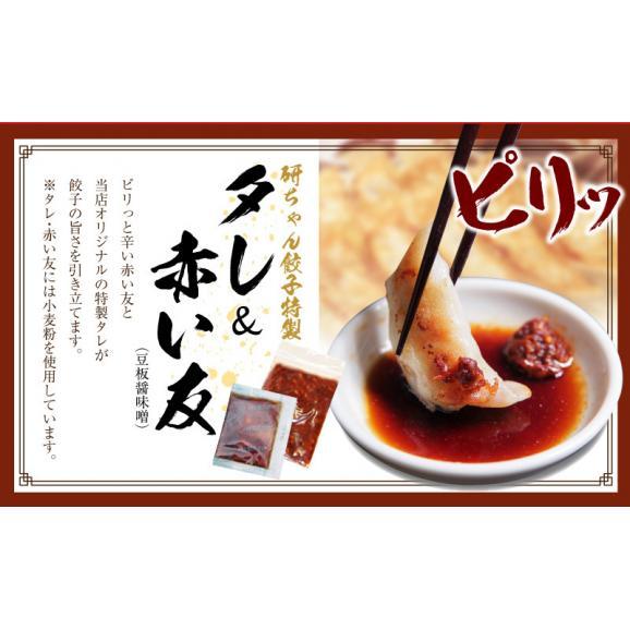 【送料・税込】米粉の皮で包んだ餃子セットB(野菜餃子3袋×肉餃子3袋×タレ10個)05
