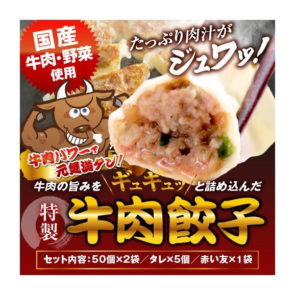 【送料無料・タレ付】研ちゃん餃子の業務用餃子! 牛肉餃子 50個入り×2袋01