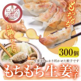 【送料無料】業務用 もちもち生姜餃子(にんにく無し) 300個(50個×6袋)