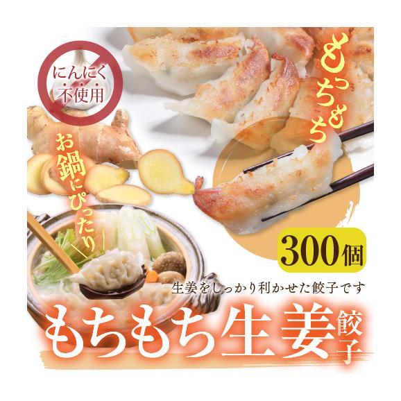【送料無料】業務用 もちもち生姜餃子(にんにく無し) 300個(50個×6袋)01