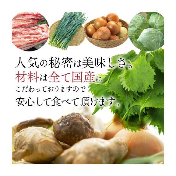 【送料無料】業務用 もちもち生姜餃子(にんにく無し) 300個(50個×6袋)02