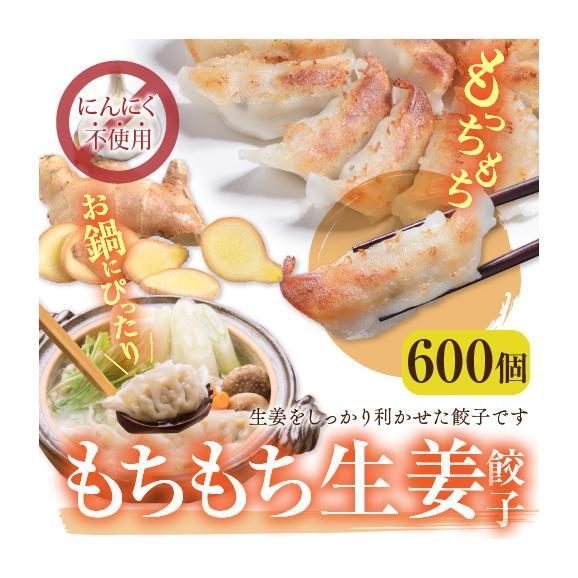 【送料無料】業務用 もちもち生姜餃子(にんにく無し) 600個(50個×12袋)01