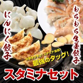 【送料無料】お歳暮 ギフト プレゼント 新にんにく餃子!もちもち生姜餃子たっぷり!スタミナセット