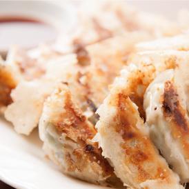 【送料無料】広島の人気餃子バル!定番のご自宅用もち豚餃子 50×2 100個セット