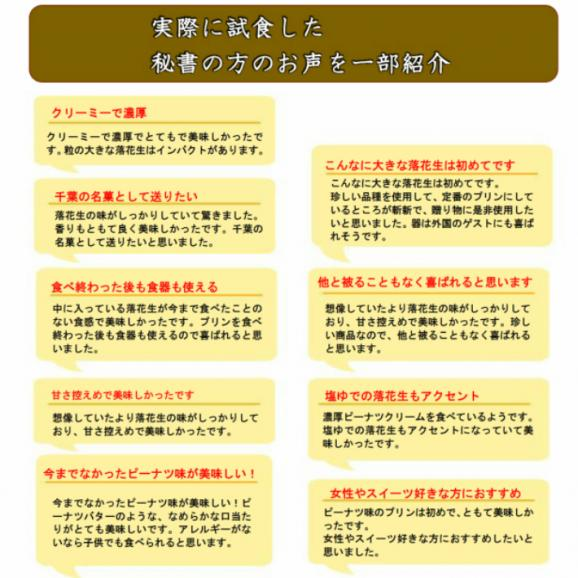 落花生プリン(チョコレート)6個入【送料込】04