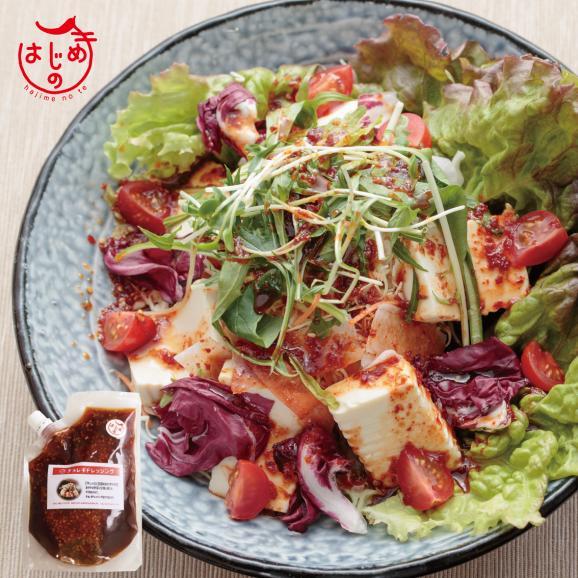 チョレギドレッシング 野菜サラダに 豆腐サラダに02