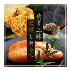 博多三昧・お試しセット (もつ鍋コロッケ・水炊き餃子・からし明太子)