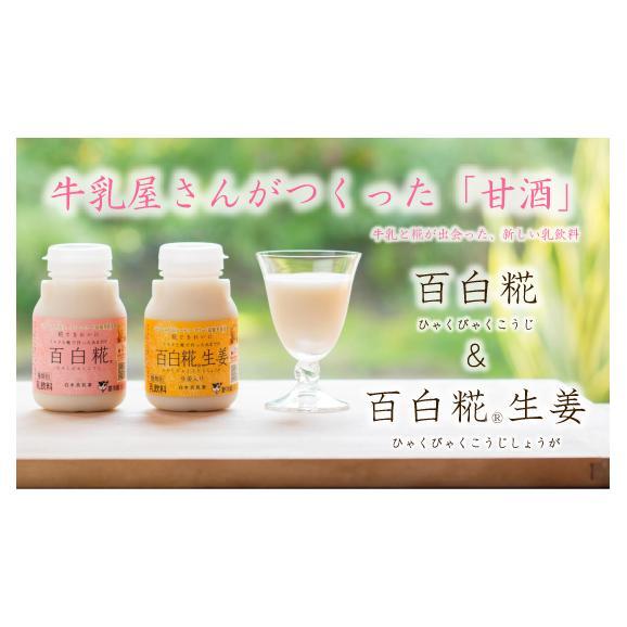 牛乳あまざけ「百白糀」~ひゃくびゃくこうじ~ 12本セット(プレーン&生姜) 01