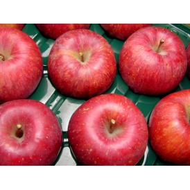 安曇野 あらやファームのりんご サンふじ約5kg