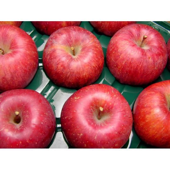 安曇野 あらやファームのりんご サンふじ約5kg01