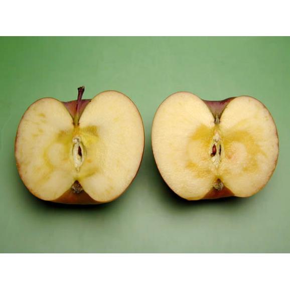 安曇野 あらやファームのりんご サンふじ約5kg02