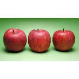 安曇野 あらやファームのりんご サンふじお試し3個セット