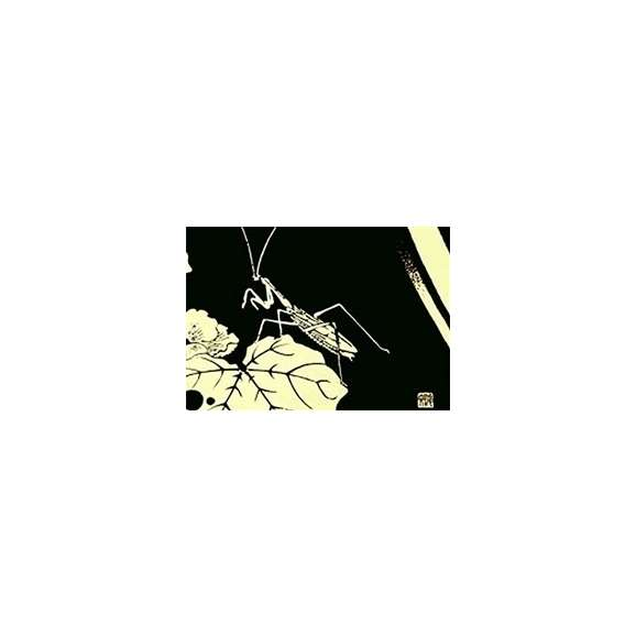伊藤若冲 黒と金の世界 ランチョンマット(大)B01