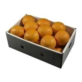栗山園の清見オレンジ18個(3Lサイズ)約5.4Kg~6Kg【送料無料(沖縄は1000円)】