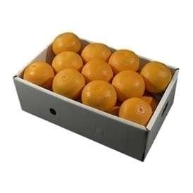 栗山園の清見オレンジ21個(2Lサイズ)約5.4Kg~6Kg【送料無料(沖縄は1000円)】