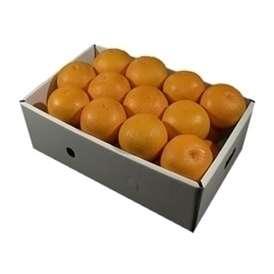 栗山園の清見オレンジ24個(2Lサイズ)約5.4kg~6kg【送料無料(北海道、沖縄は1000円)】