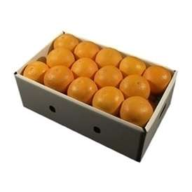 栗山園の清見オレンジ27個(Lサイズ)約5.2Kg~5.8Kg【送料無料(沖縄は1000円)】