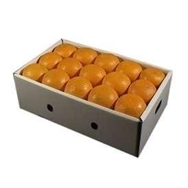 栗山園の清見オレンジ30個(Lサイズ)約5.2~5.8Kg【送料無料(沖縄は1000円)】