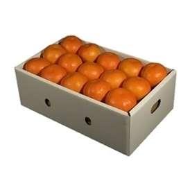 栗山園のセミノールオレンジ30個【送料無料(沖縄は1000円)】