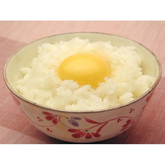 ポロニ養鶏場の元気な卵 30個入り箱05