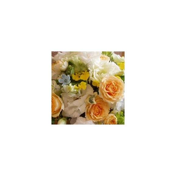 おまかせシーズンアレンジホワイト系カラフルな色使いスペシャル03
