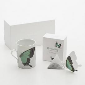 バタフライティーBUTTERFLY gift set/green&Darjeeling