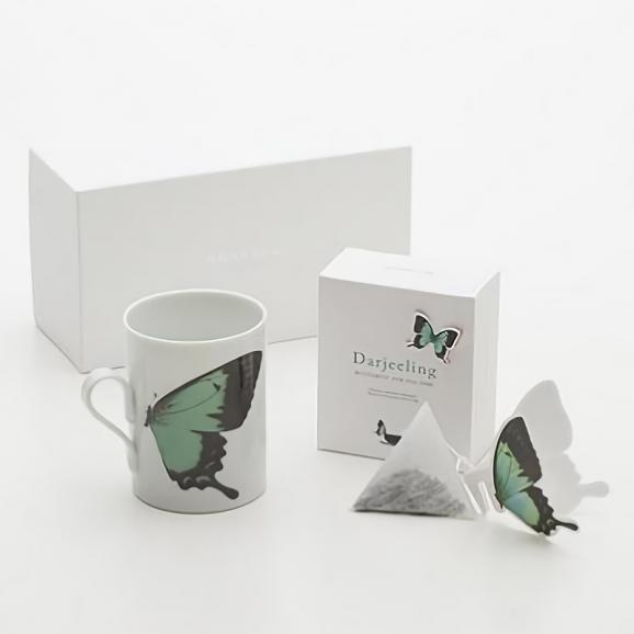 バタフライティーBUTTERFLY gift set/green&Darjeeling01