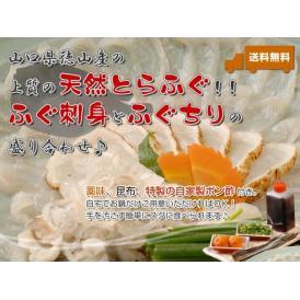 【送料無料】天然とらふぐセット 「ふぐ刺身+ふぐちり鍋セット」(2〜3人前)