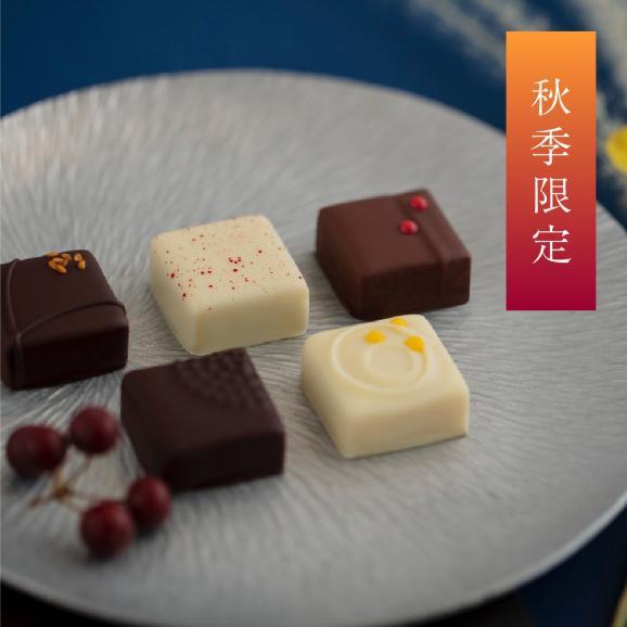 【期間限定】しゅんかしゅうとう kikiボンボンショコラ秋限定5個入【 りんご、胡麻、すだち、酒粕、柚子】01