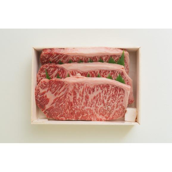 ステーキセットA(黒毛和牛肉使用)01
