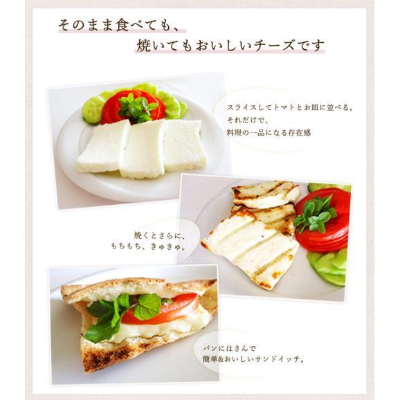 Barabu ヘリムチーズ 減塩タイプ (Hellim Cheese Reduced Salt) 250g01