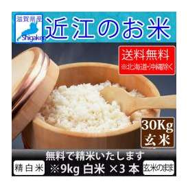 【送料無料※北海道・沖縄を除く】28年 近江のお米(滋賀県産10割) 30kg玄米【精米無料】